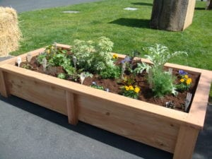 Building a raised flower bed